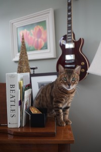 2013 Dec 31 - Cato, The Beatles & a Les Paul
