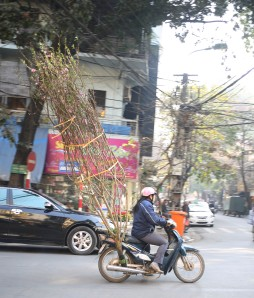 Thursday - Hanoi53