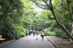 June 10 - Shinjuku Gyoen National Garden02