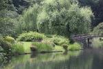 June 10 - Shinjuku Gyoen National Garden16