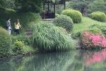 June 10 - Shinjuku Gyoen National Garden41