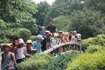 June 10 - Shinjuku Gyoen National Garden59