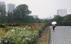 June 10 - Shinjuku Gyoen National Garden85