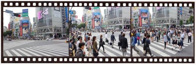 Shibya scramble crossing144