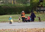 2014 Oct 30 - Miss Adie's Hallowe'en Parade1