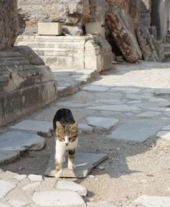Oct 12 - Ephesus34